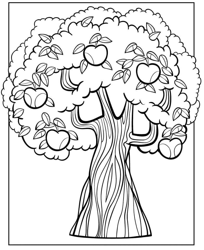 Раскраска яблоня 6