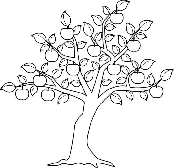 Раскраска яблоня 7