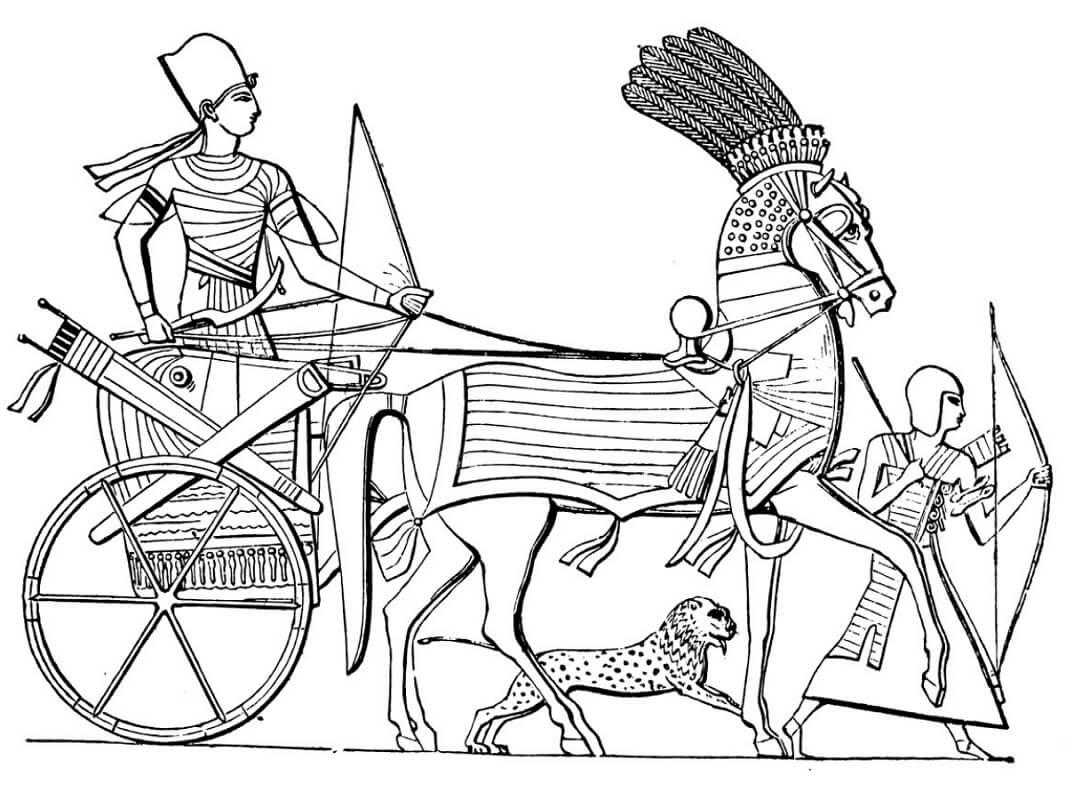 Раскраска Египетская колесница