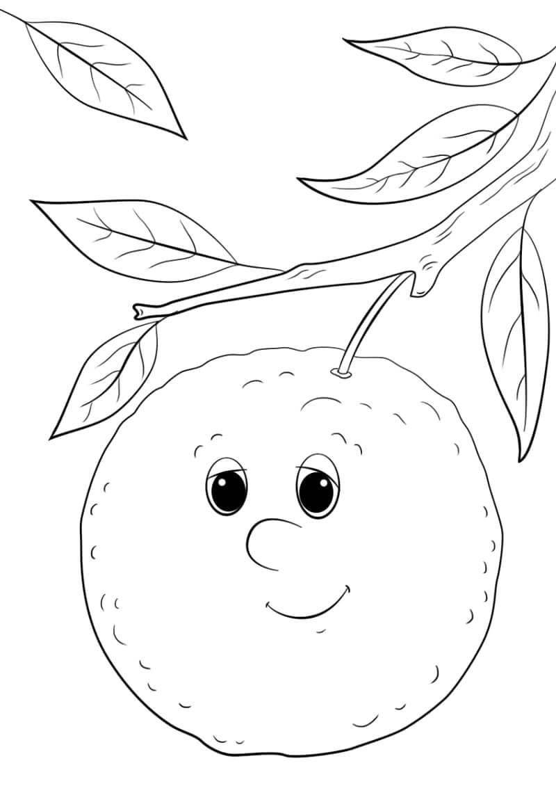 Раскраска мультфильм апельсин