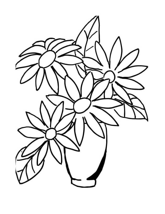 Раскраска ромашки 4