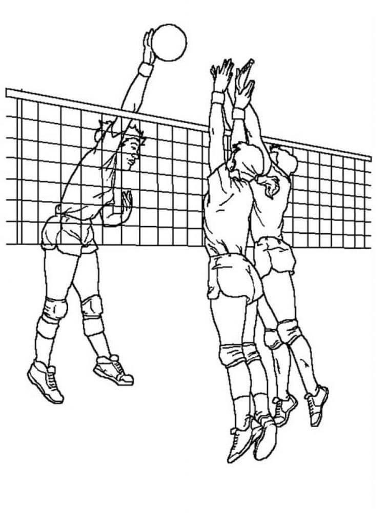 Раскраска волейболисты 1