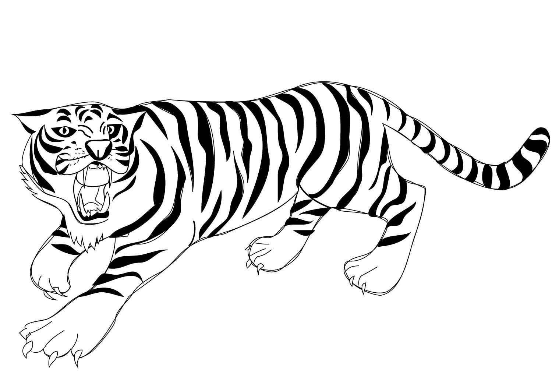 Раскраска Ревущий тигр