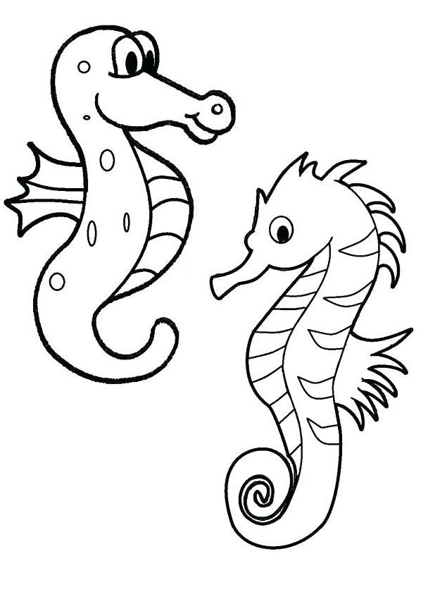 Раскраска два морской конек