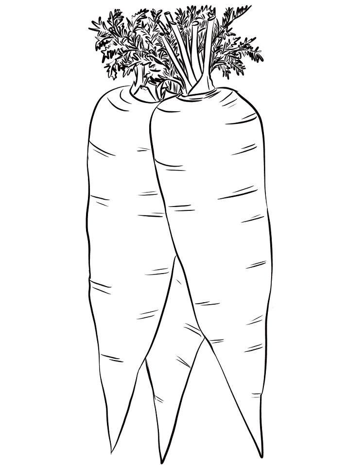 Раскраска Три морковки
